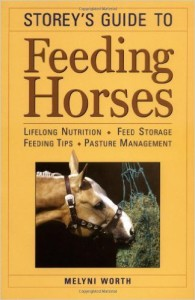 FeedingAHorse